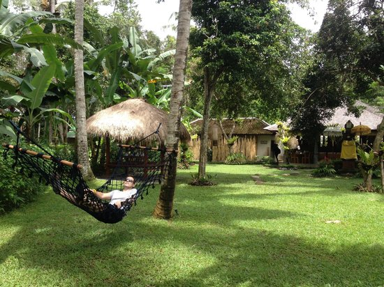 Ubud Padi Villas: Garden outside the villas