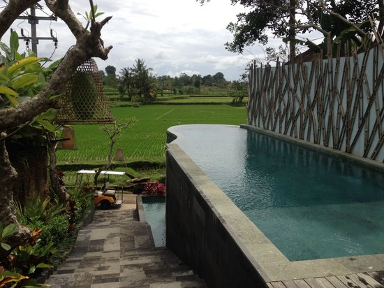 Ubud Padi Villas: Path way to lobby