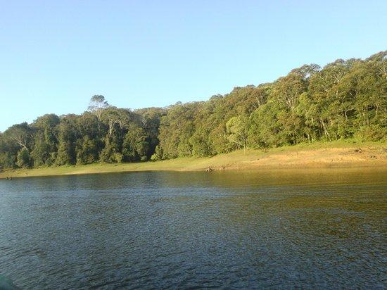 Periyar Wildlife Sanctuary : lake