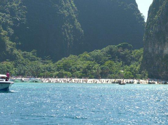 Sofitel Krabi Phokeethra Golf & Spa Resort: Maya Beach à Phi Phi Island.