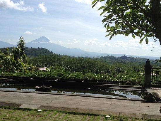 Plataran Borobudur Resort & Spa: view from the restaurant terrasse