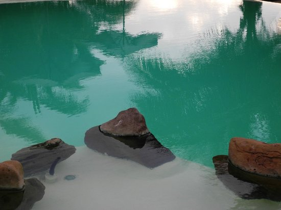 La Posada de los Tumpis: Pooldetail