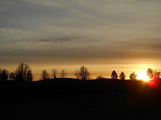 Mount Juliet Estate: Grounds at sunset