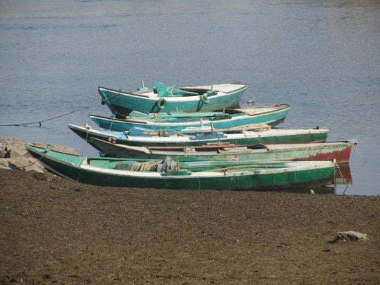 Aswan Individual - Daily Tour : Impression