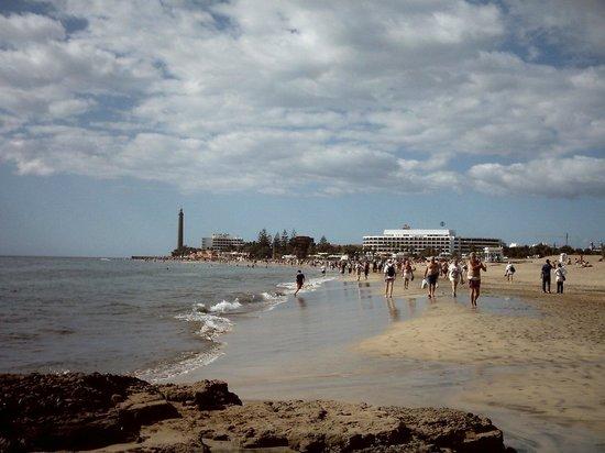 Venesol Apartments: On the Beach