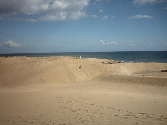 Venesol Apartments: Sand Dunes & Beach
