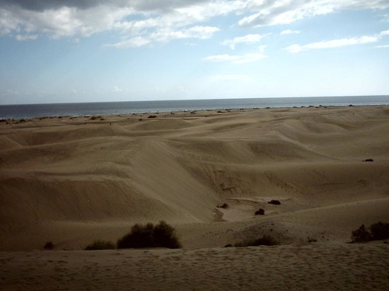 Venesol Apartments: Sand Dunes