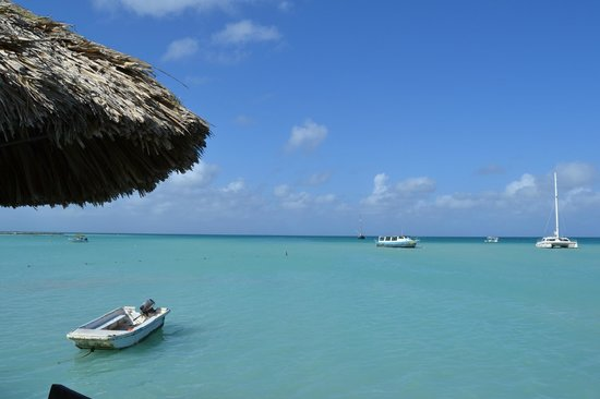The Mill Resort & Suites Aruba: utsikt fra stranden