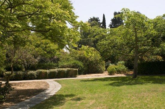Nes Ammim Israel  City pictures : Nes Ammim afbeeldingen vakantiefoto's Nes Ammim, Galilee ...