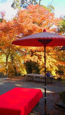 Jingoji Temple: 途中の茶屋