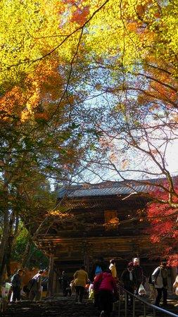 Jingoji Temple: 石段
