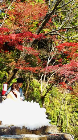 Jingoji Temple: 脇から
