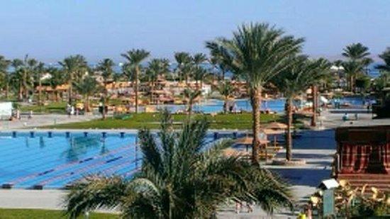 Desert Rose Resort: Вид из номера