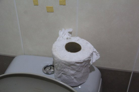 Backpack Guest House : Toilet paper??