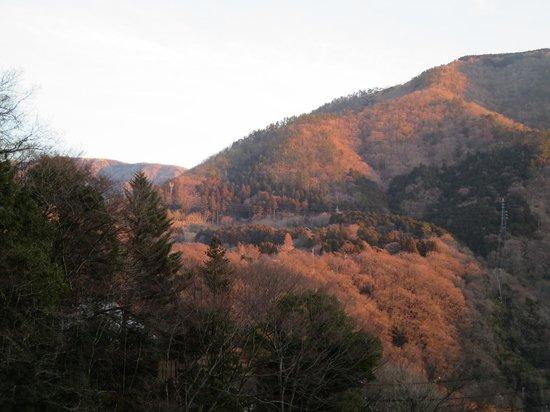 Tsutaya: 部屋からの景色