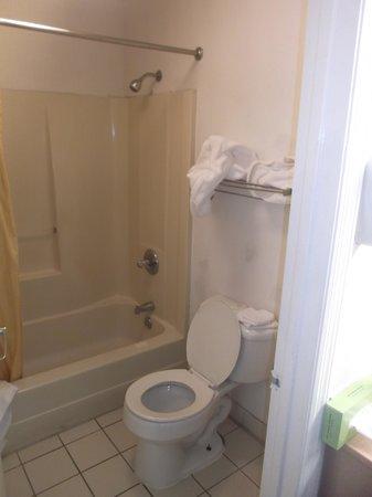 Econo Lodge: Salle de bain de la chambre 203 au 16 janvier 2014.