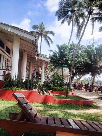 Palm Villa: Christmas Decs going up!