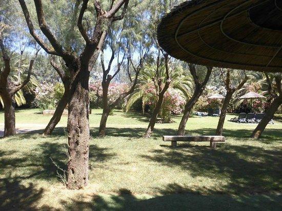 Salinello Village: Solarium