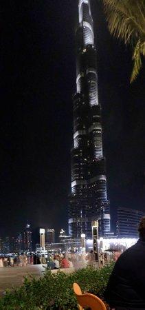 Social House: Views of the Burj Khalifa