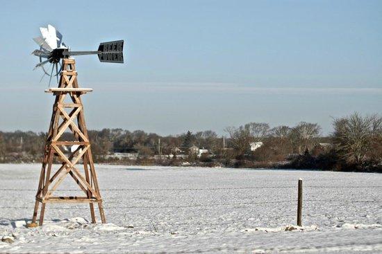Buzzards Bay Brewing's Windmill