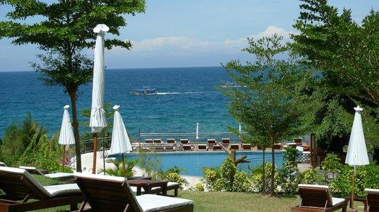 Pinnacle Koh Tao Resort: Liegewiese am Pool