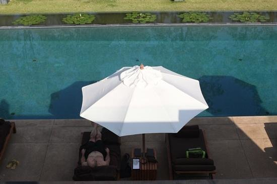 Anantara Chiang Mai Resort : anantara's pool