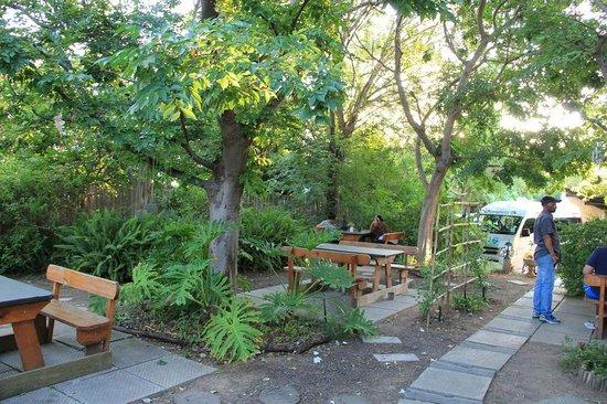 Backpackers Paradise & Joyrides : Garden area