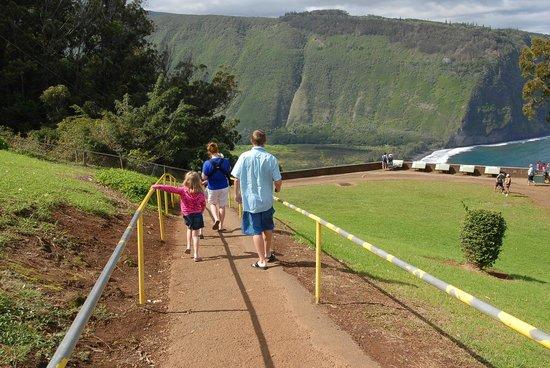 Waipio Valley Lookout: walk down to lookout