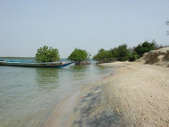 Camping Le Farakaba : plage