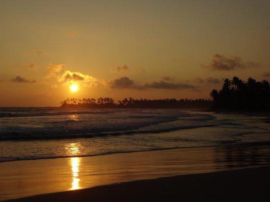 Dickwella Beach Hotel: Sunset - Blick vom Hotel