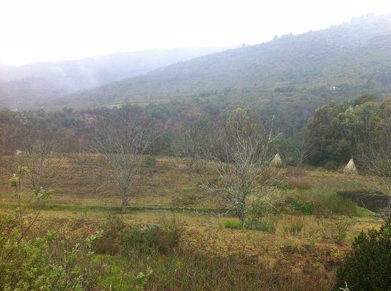 Outeniqua Trout Lodge: Misty Mountains