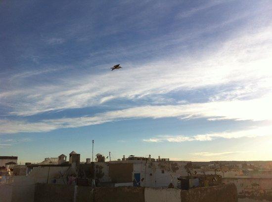 Riad Malaika: Vue de la terrasse