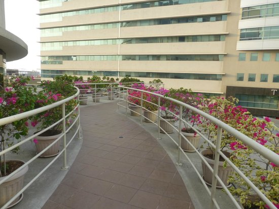 Sonesta Hotel Guayaquil : Terraza