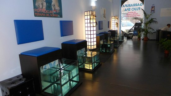 Garrarufa Fluo Spa: vasche fish pedicure