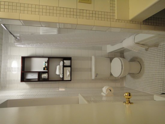 Washington Square Hotel: baño