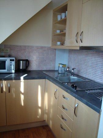 Na Ostrove Pension : Кухня в апартаменте