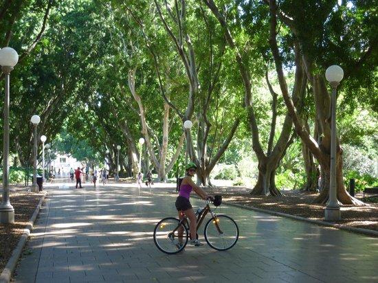 Bike Buffs - Sydney Bicycle Tours: Hyde Park