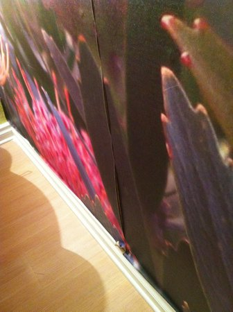 Hotel Indigo Miami Lakes: Peeling wall paper