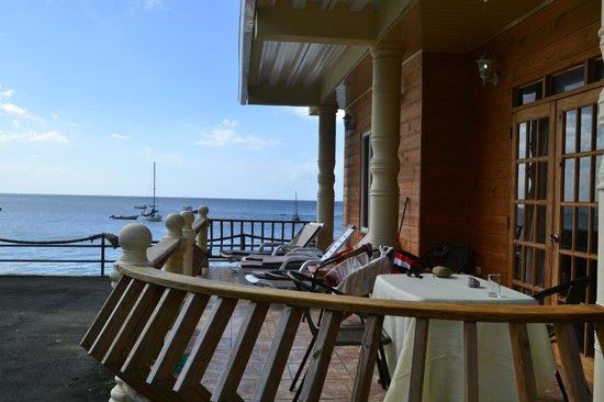 Naturalist Beach Resort: Shark balkony