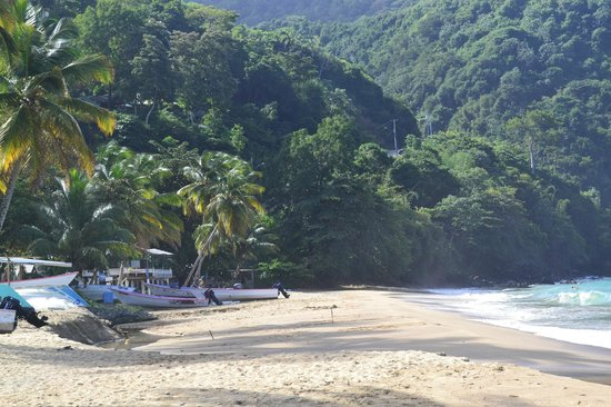 Naturalist Beach Resort: Castara