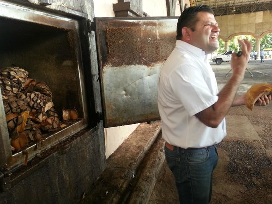 Tequila Express: Our knowledgeable guide - We tasted the cooked tequila plant