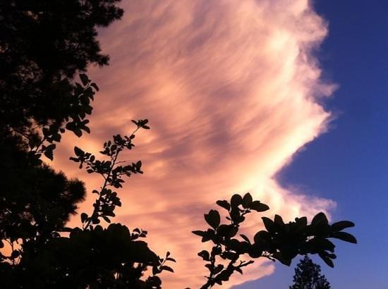 Cheyenne Botanic Gardens : Cheyenne Sunset