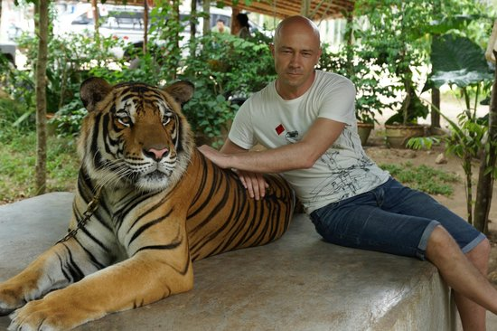 Namuang Safari Park: Фотографирование с тигром