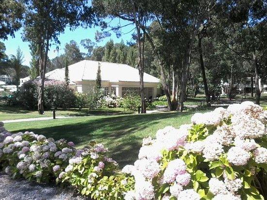 Green Park: Hermosa vista de los jardines