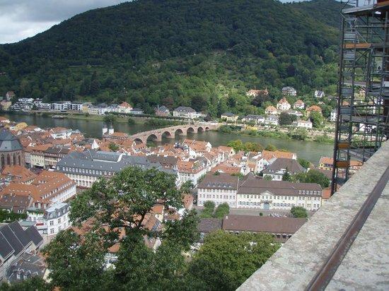 Møt Heidelberg studenter