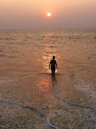 Marari Dreamz : Marari beach