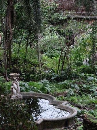 Casa Oliver Principe Real : Jardín visto desde la habitación, estaba en obras