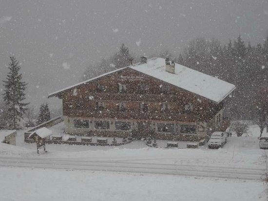 Le Caprice des Neiges : Le Caprice sous la neige