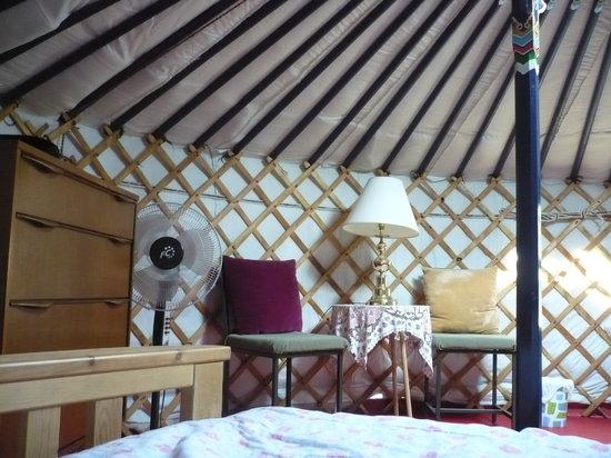 Waldersee, Canada: peak inside of the blue yurt