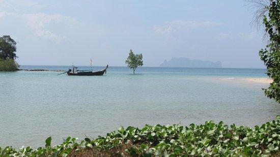 Nakamanda Resort & Spa: Udsigt fra poolområdet